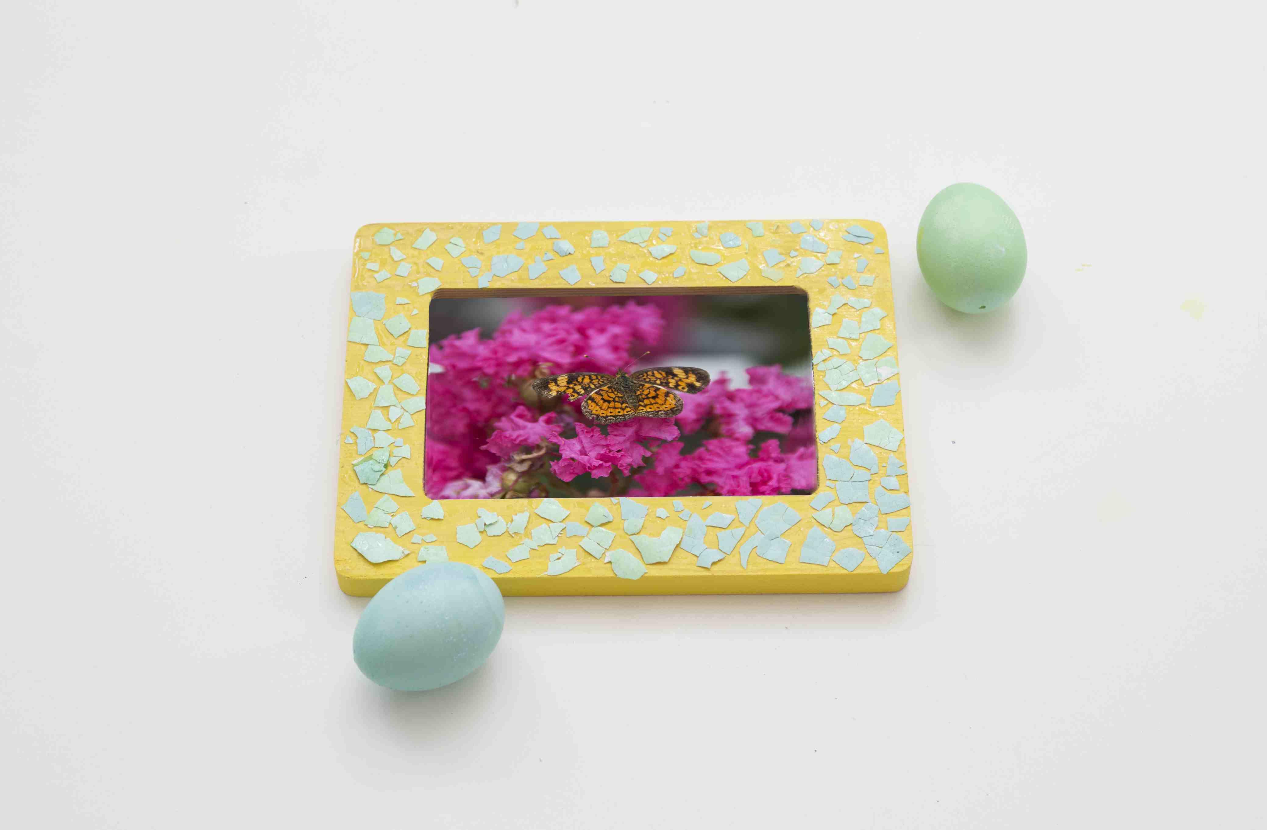 Colorful Egg shell Frame Art
