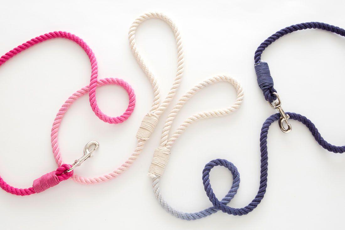 dyed dog leash diy