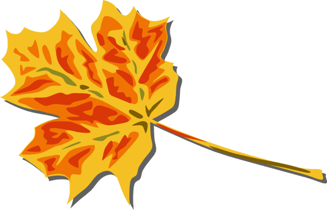 A yellow and red fall leaf