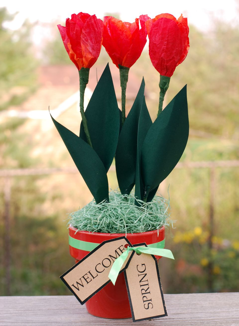 Paper tulips made out of coffe filters