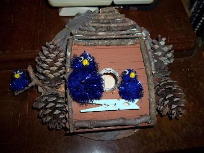 Popsicle Stick Bird House Craft