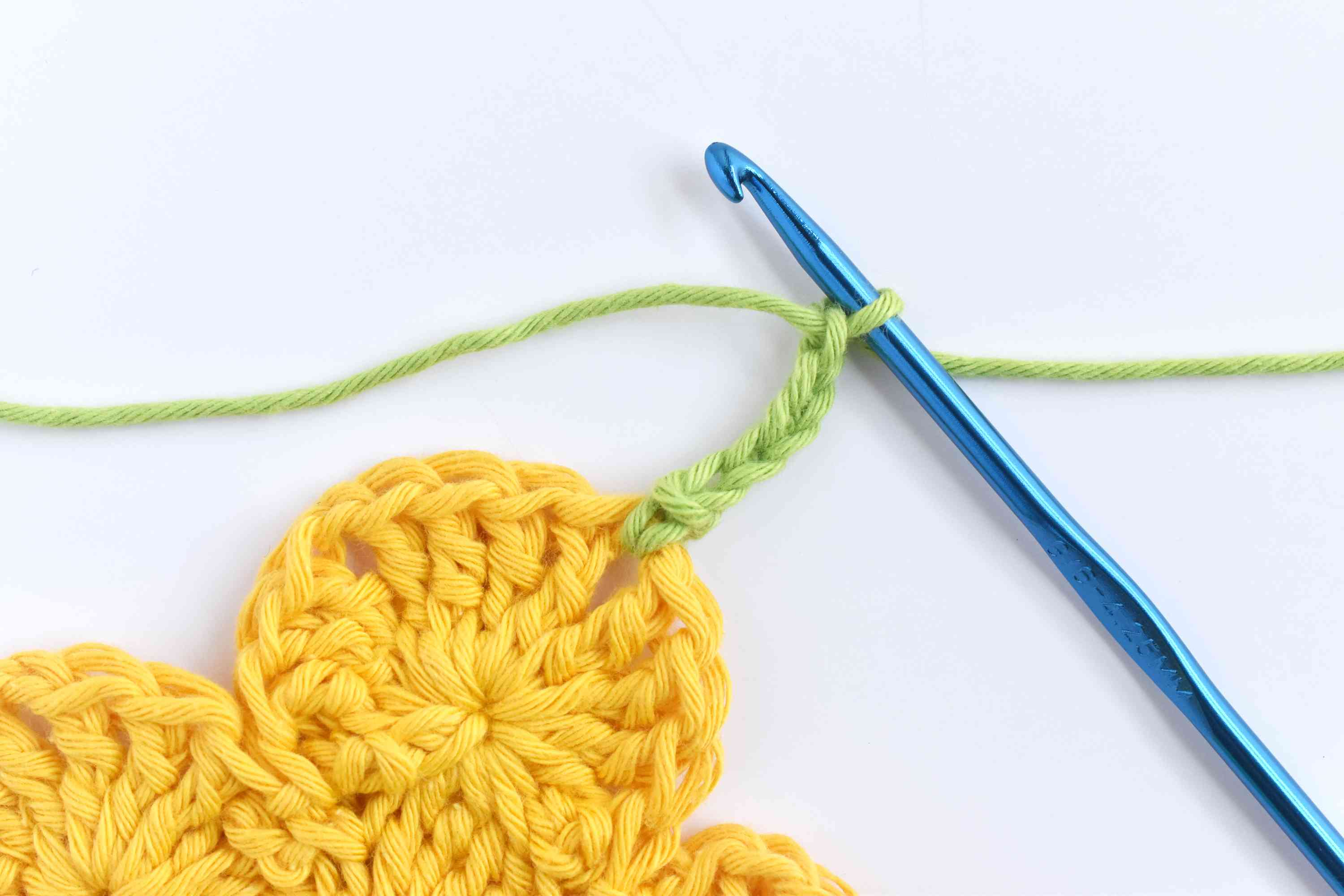 Join Yarn in a Chain 1 Spaces and Chain 5