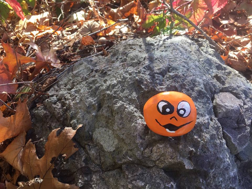 Rock painted with a smiley face sitting in a fall landscape
