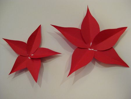 Gather Materials For The Poinsettia Flowers