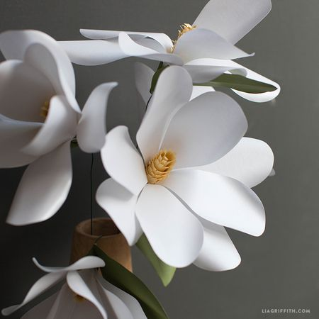 28 fun and easy to make paper flower projects you can make beautiful paper magnolia flowers mightylinksfo