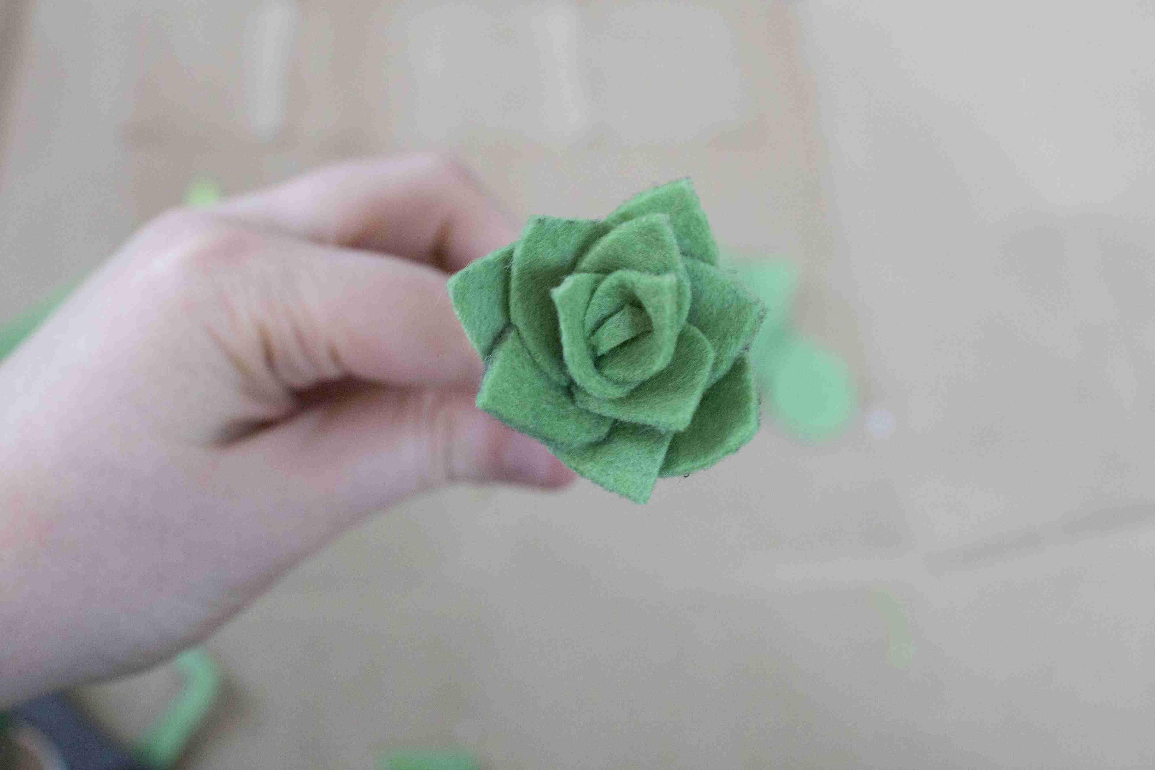 Formed felt succulents