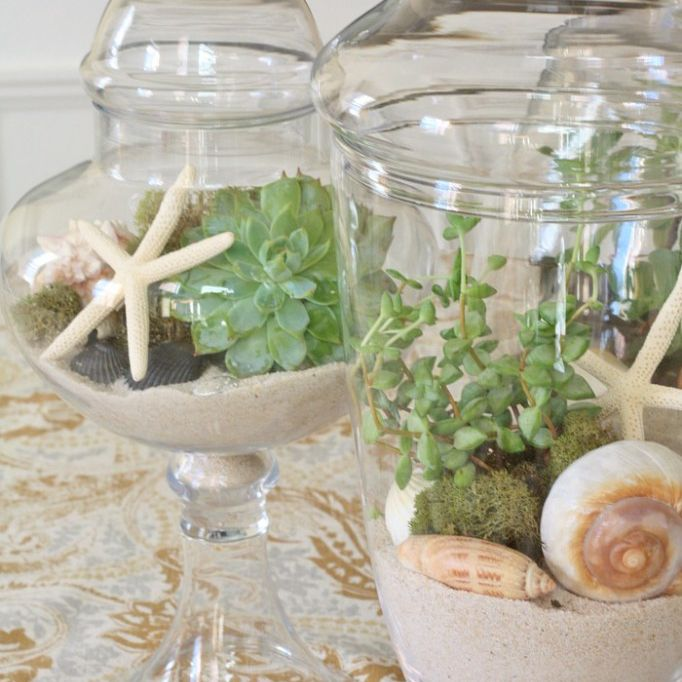 Two glass terrariums with coastal themes