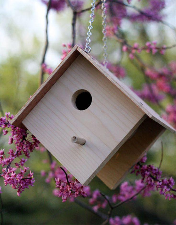 best 25 brd cage decoraton deas on pnterest.htm 15 diy birdhouse plans and ideas  15 diy birdhouse plans and ideas
