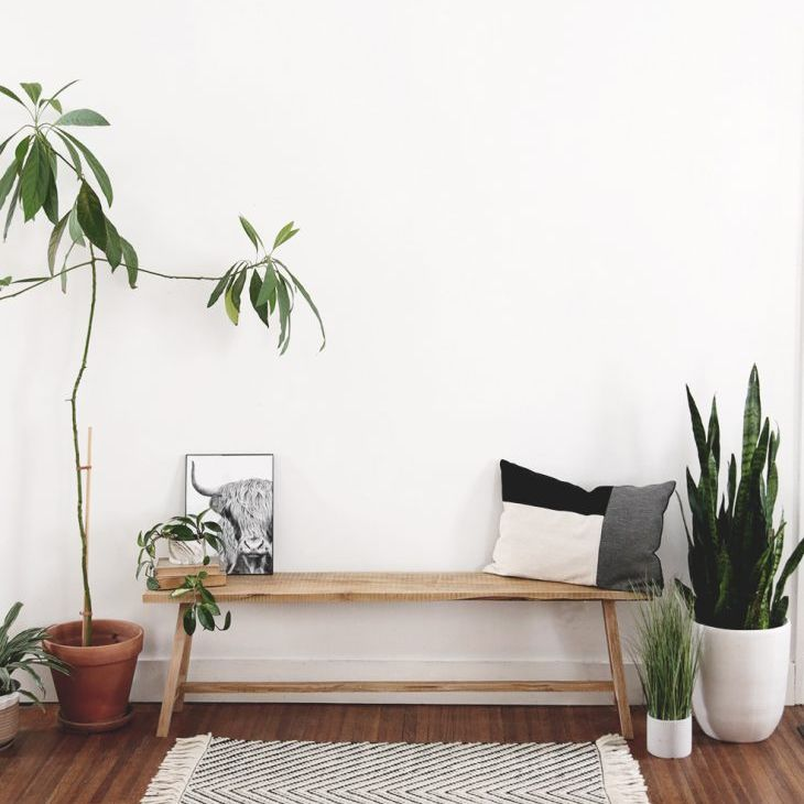 A wooden bench in a living room