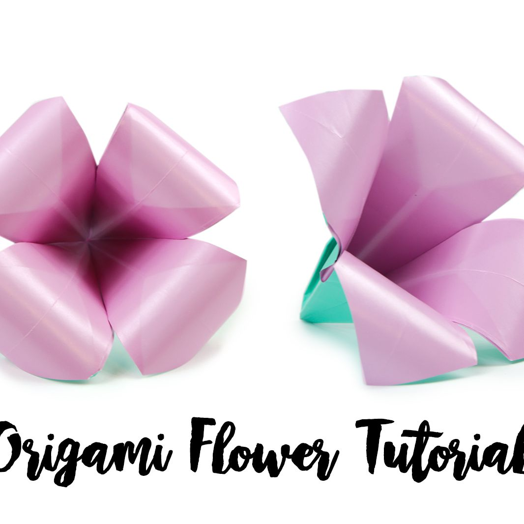 The Beginner's Guide to Paper Folding - Learn How to Make Origami | 1066x1066