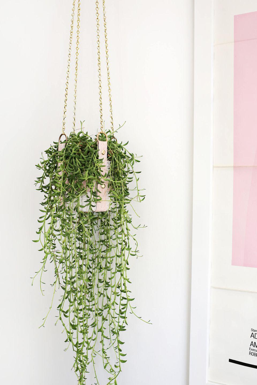 diy hanging leather strap planter