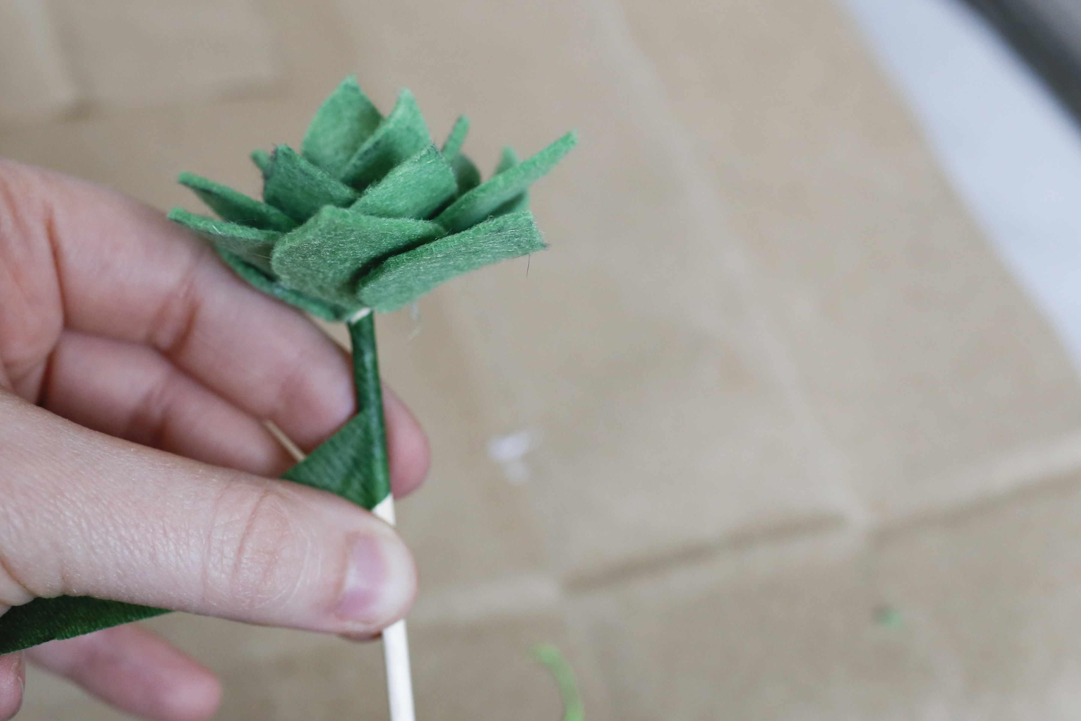 Wrap the succulent stem