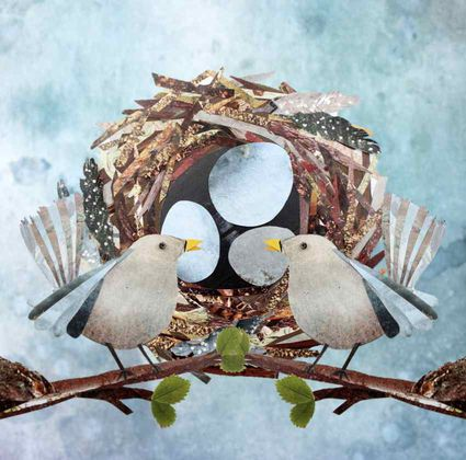 Birds and Nest Collage