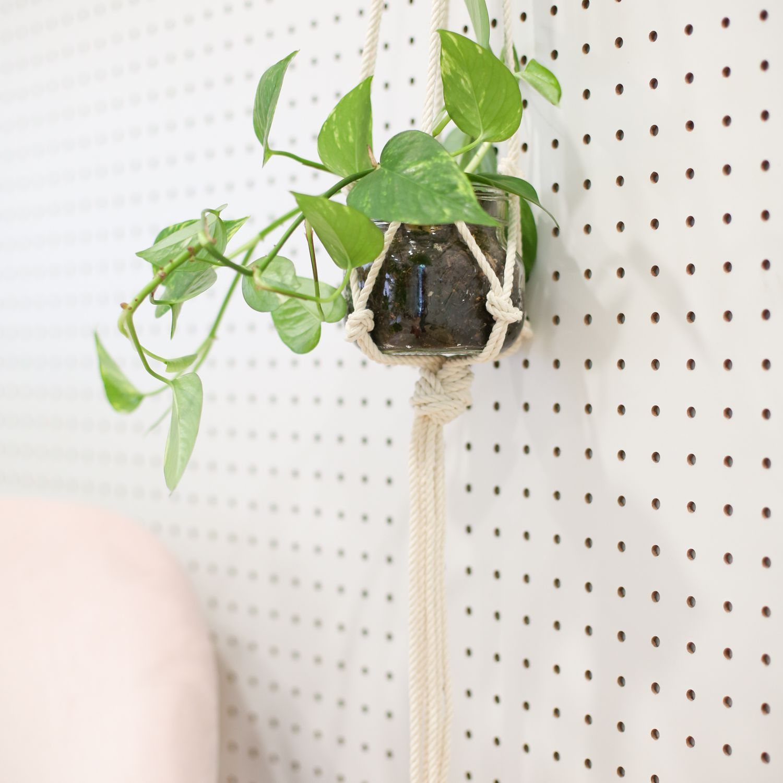 macrame mason jar plant hanger