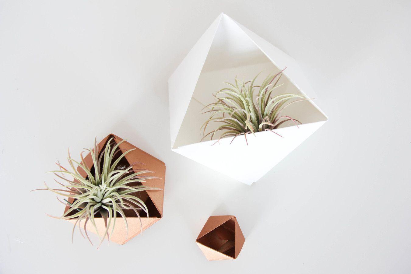 Geometric paper air planter