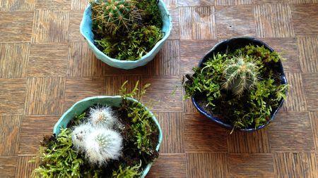 How To Make A Ceramic Plant Pot