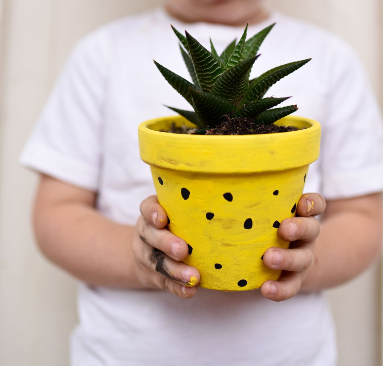 Person holding a pineapple flower pot