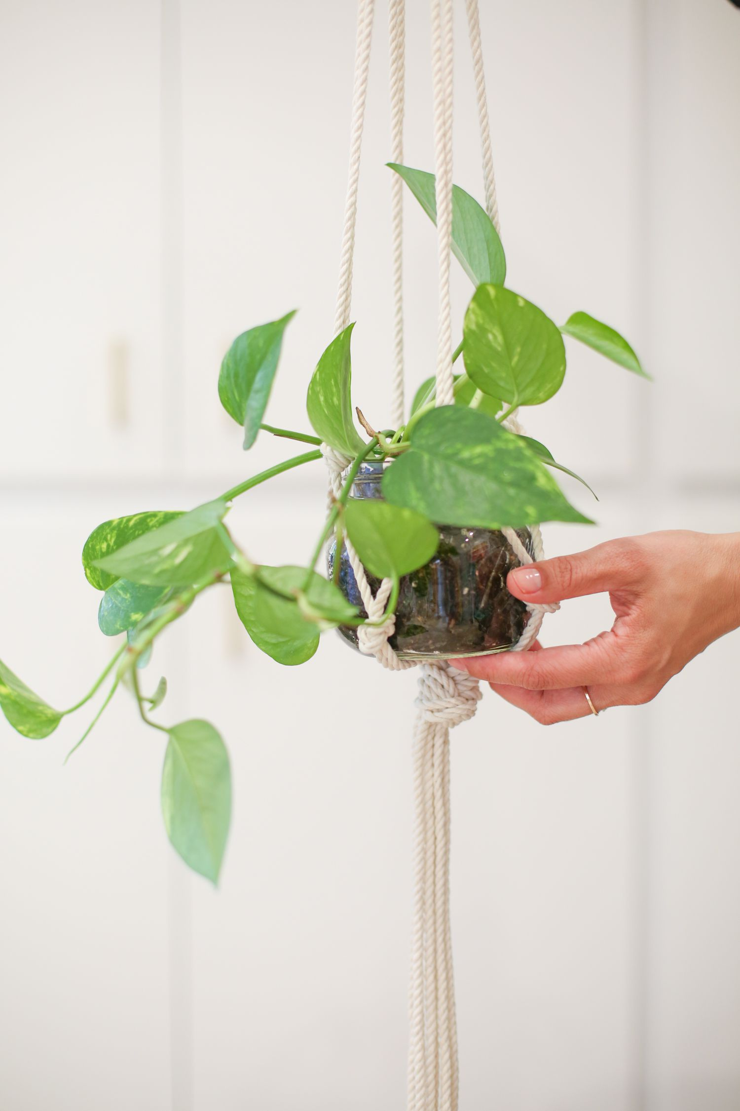 How To Make A Macrame Mason Jar Plant Hanger