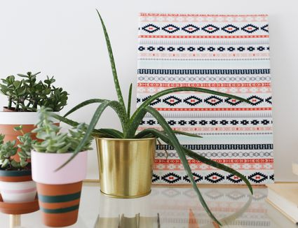 Framed fabric placed near potted plants
