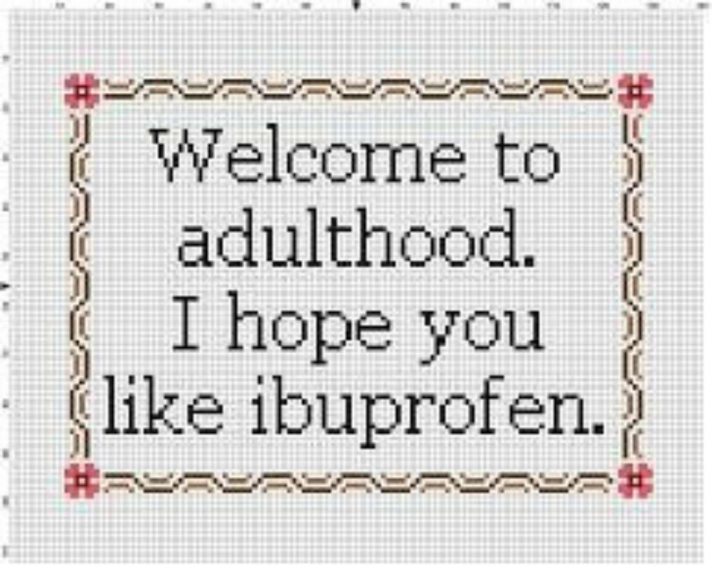 Welcome to Adulthood cross stitch