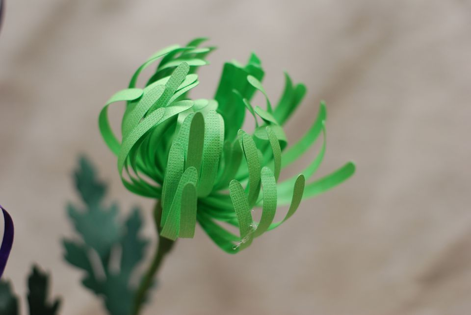 green paper spider mum tutorial