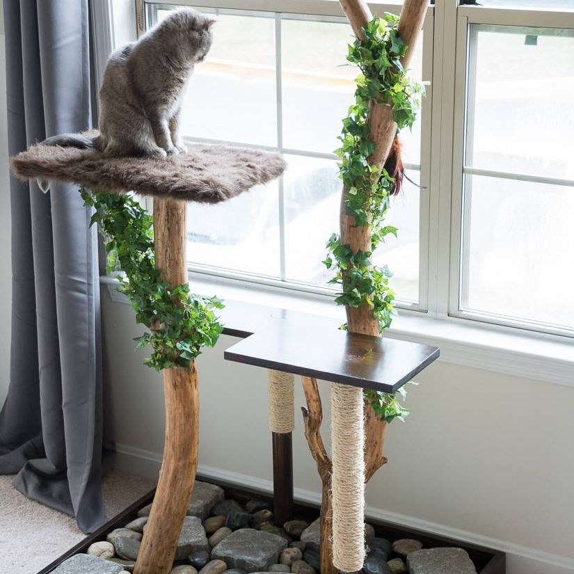 organic cat tree