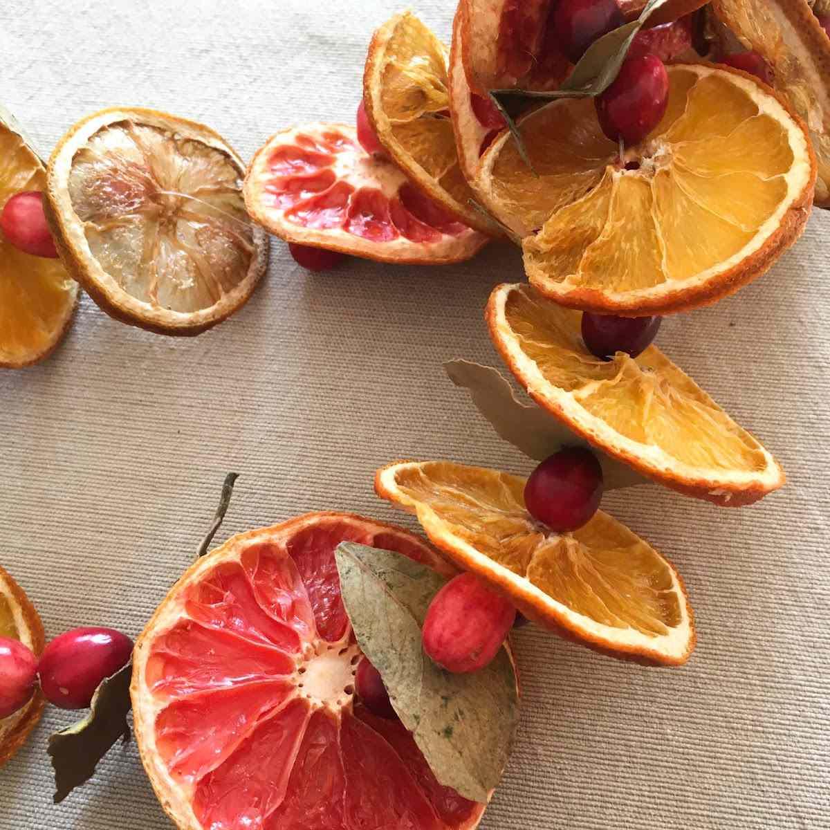 DIY Dehydrated Fruit Christmas Garland
