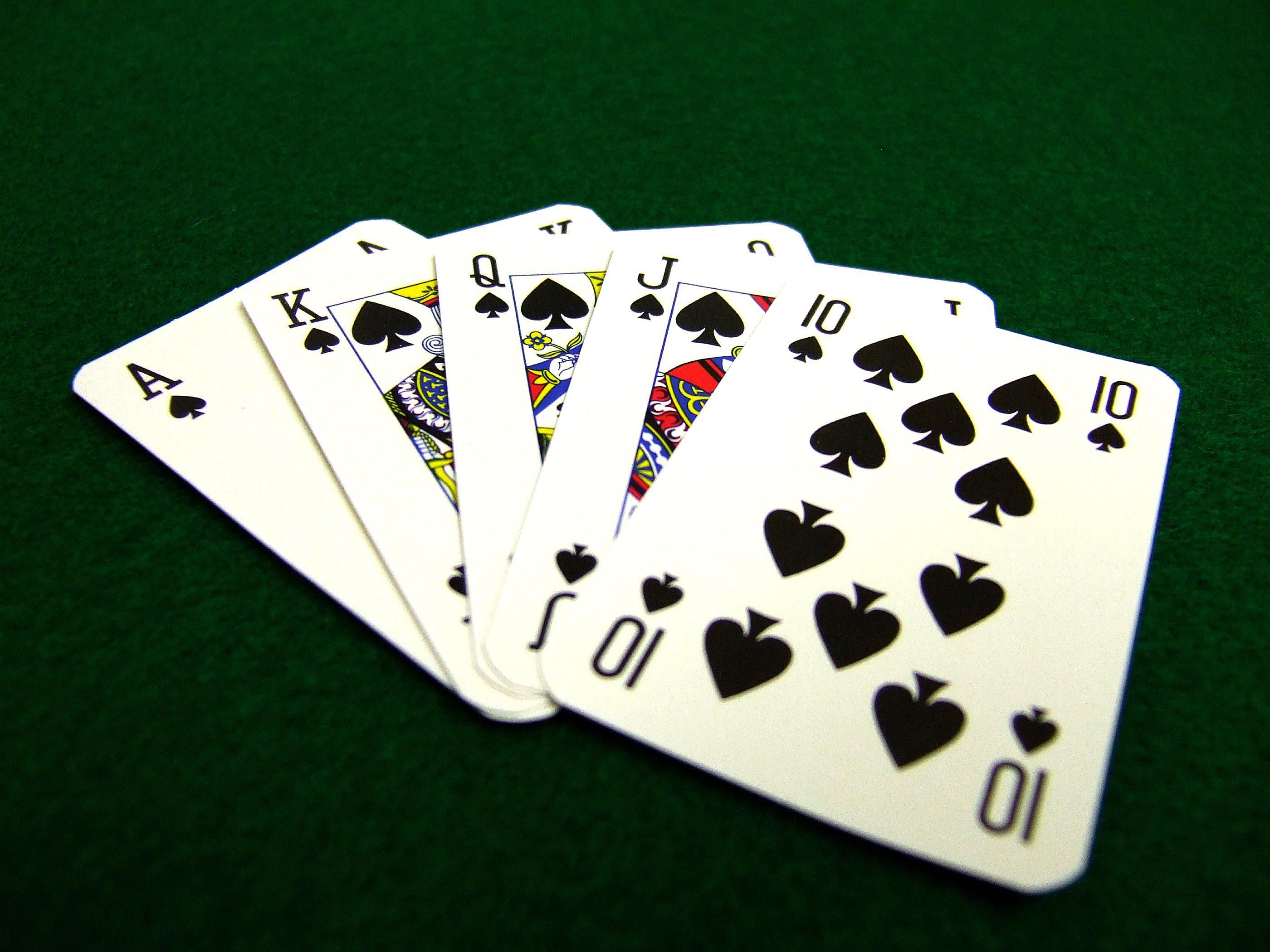 Hasenpfeffer card game rules for Charity motors bridge card