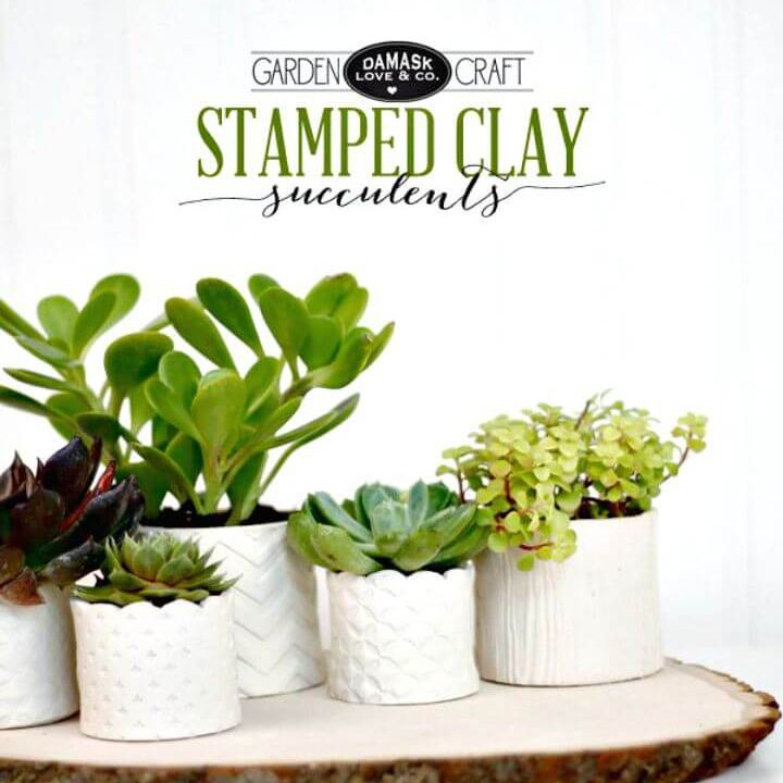 Stamped Succulent Planters