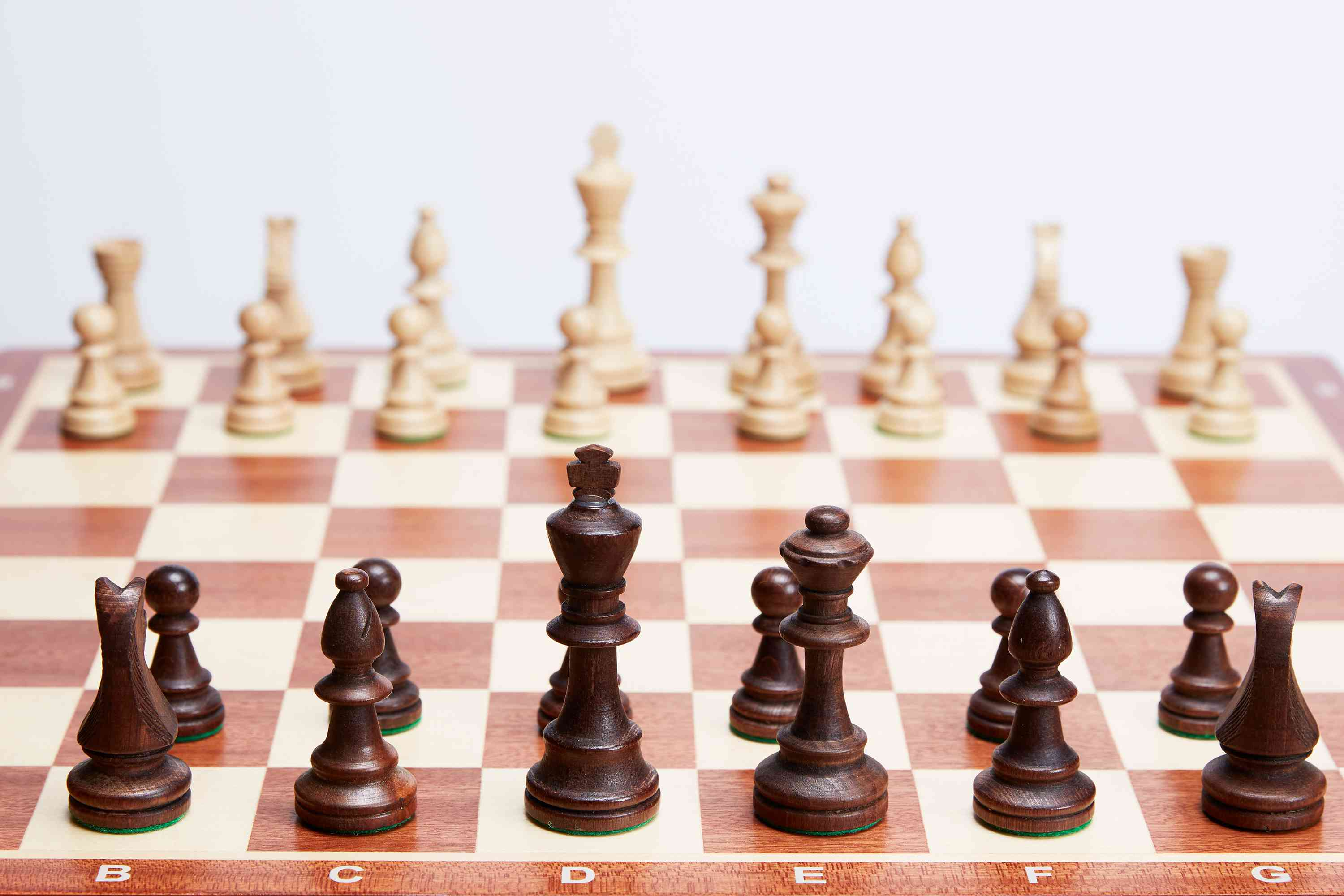 the pieces in a game of chess