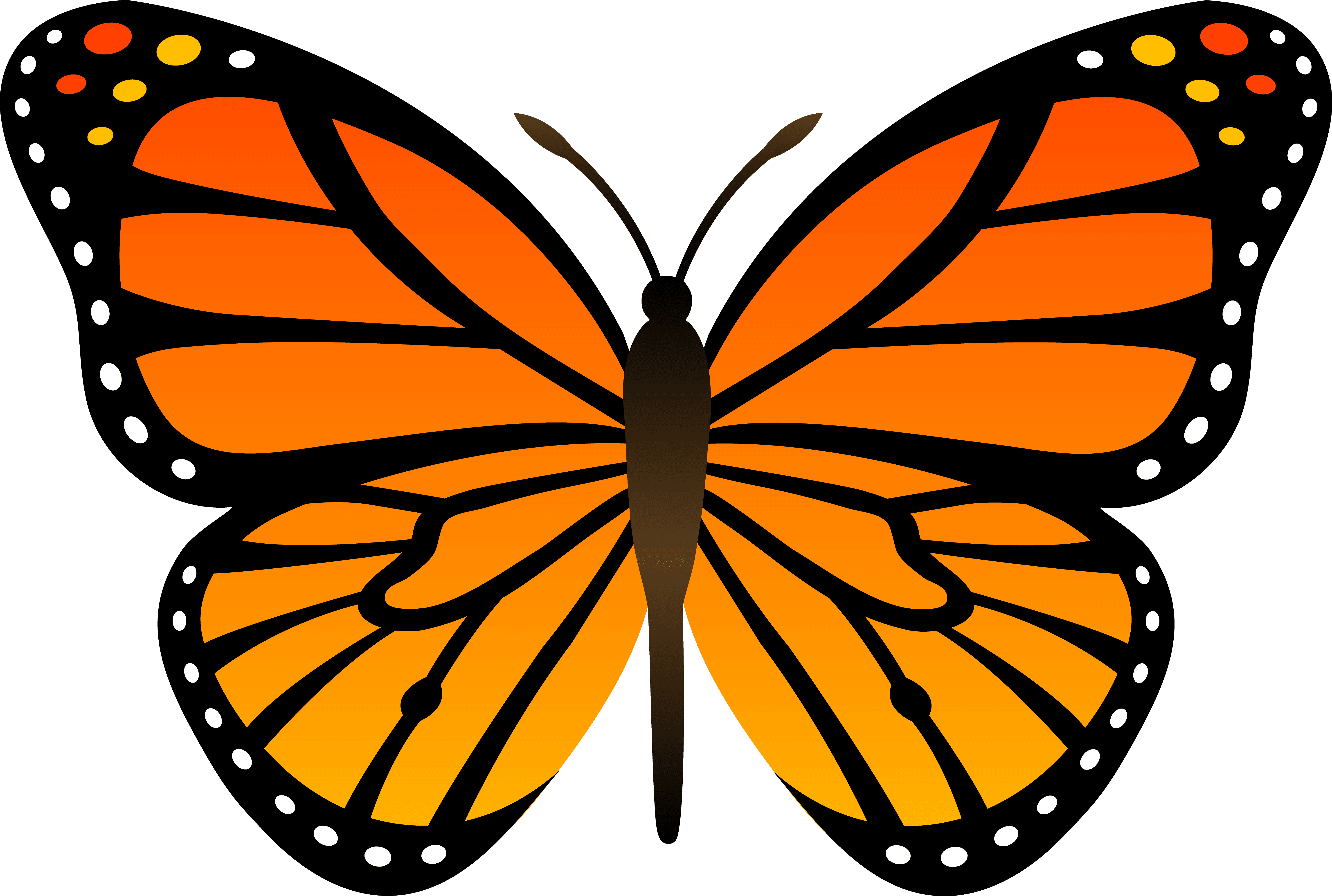 A clip art image of a Monarch butterfly