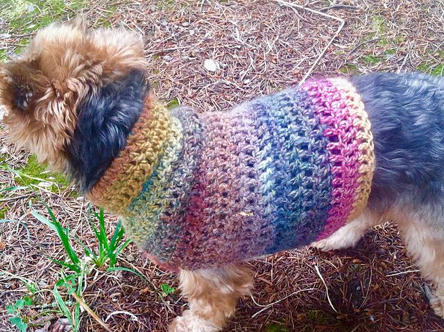 Over 100 Free Pets Crochet Patterns at AllCrafts.net - Free Crafts ... | 478x640