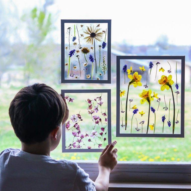 A boy hanging framed pressed flowers