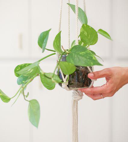 macrame mason jar hanging plant holder
