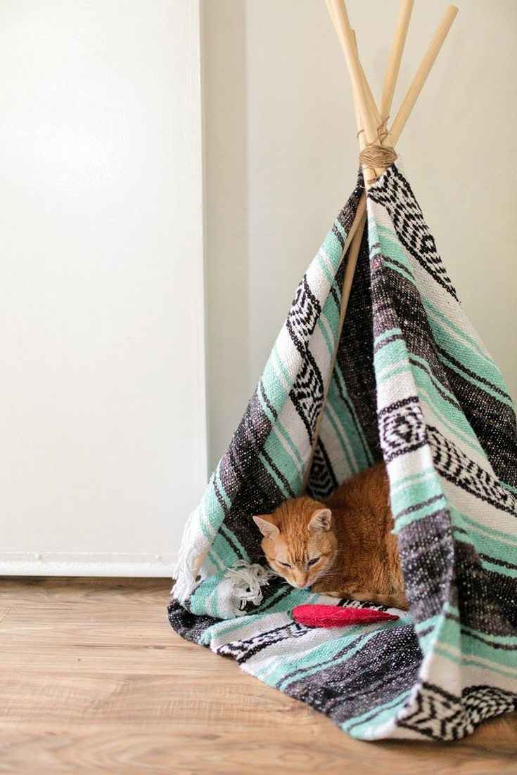 15 DIY Projects to Make for Your Cat