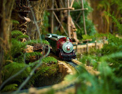 Model Train Coming Around Lush Mountain
