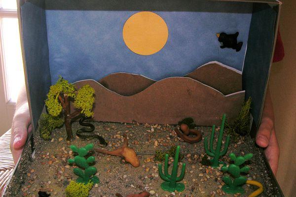 Desert Diorama Craft