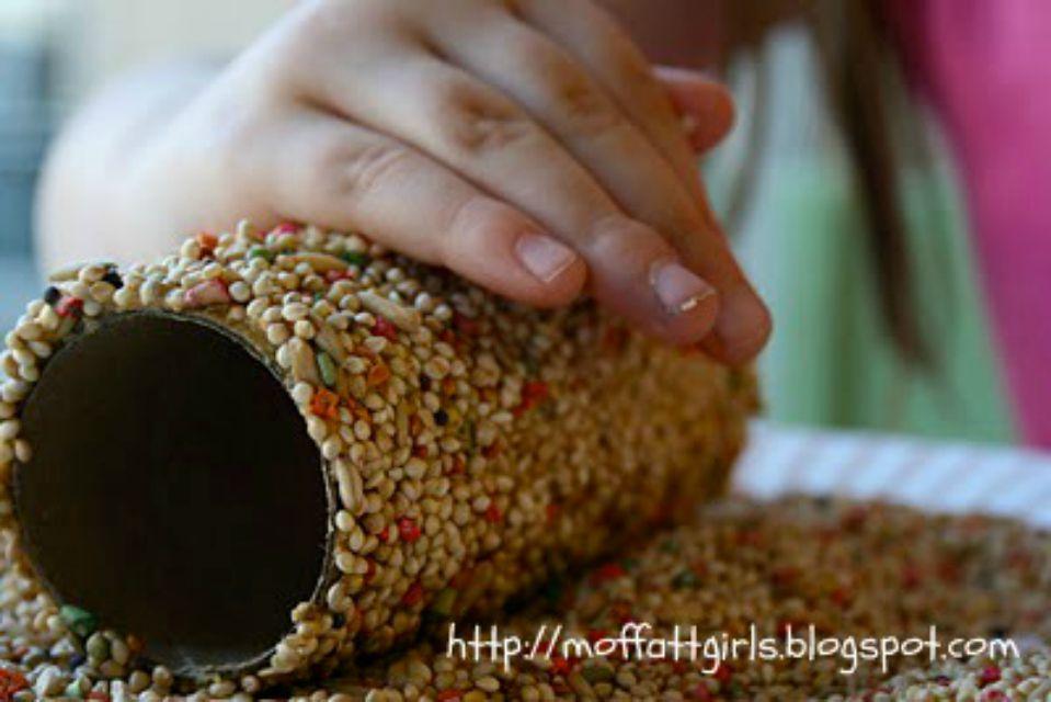 Paper roll bird feeder