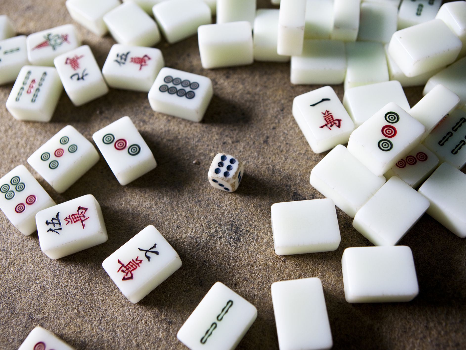 How To Play Mahjong With The Basic Rules,Pet Snakes For Kids