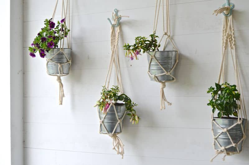 beginner macrame plant holder