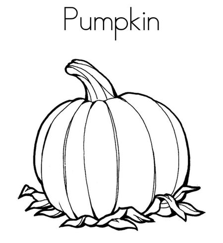 A Pumpkin Coloring Page With Leaves