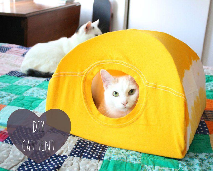 t-shirt cat tent