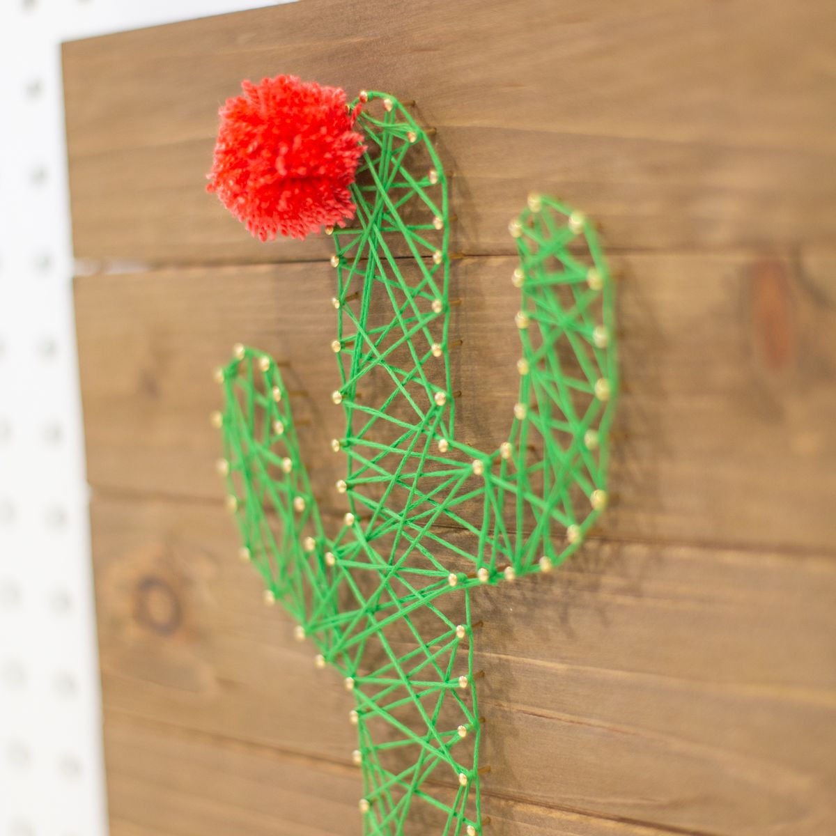 How to Make Cactus String Art