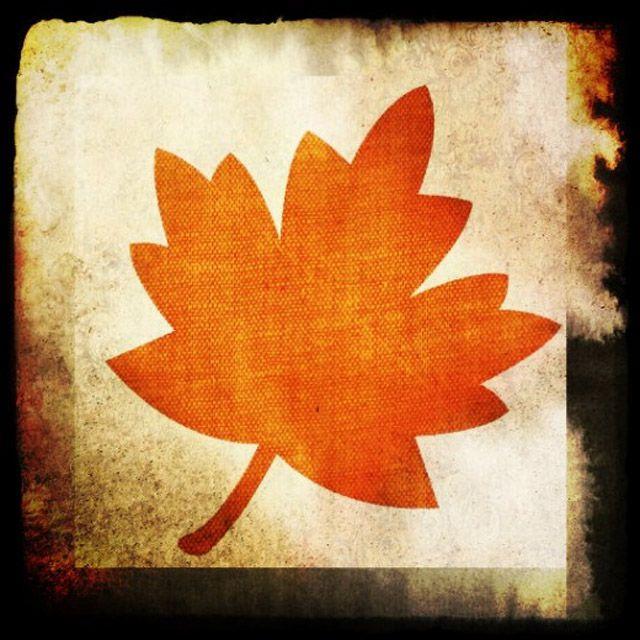 An orange fall leaf on a distressed background
