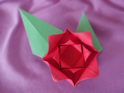 Origami Flower! : 13 Steps (with Pictures) - Instructables | 300x400