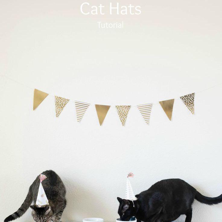 diy cat party hat