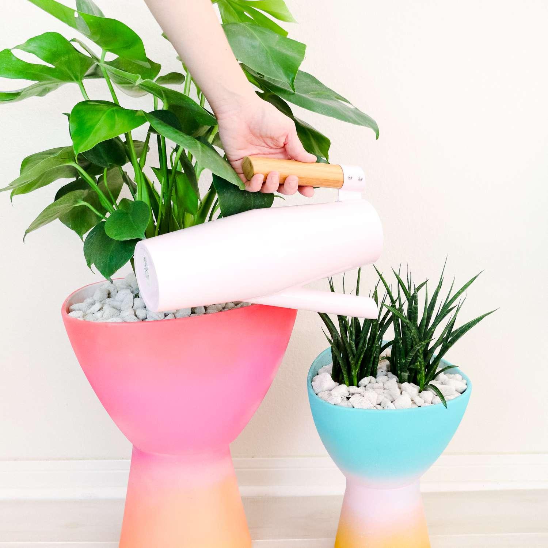 DIY Colorful Gradient Planters