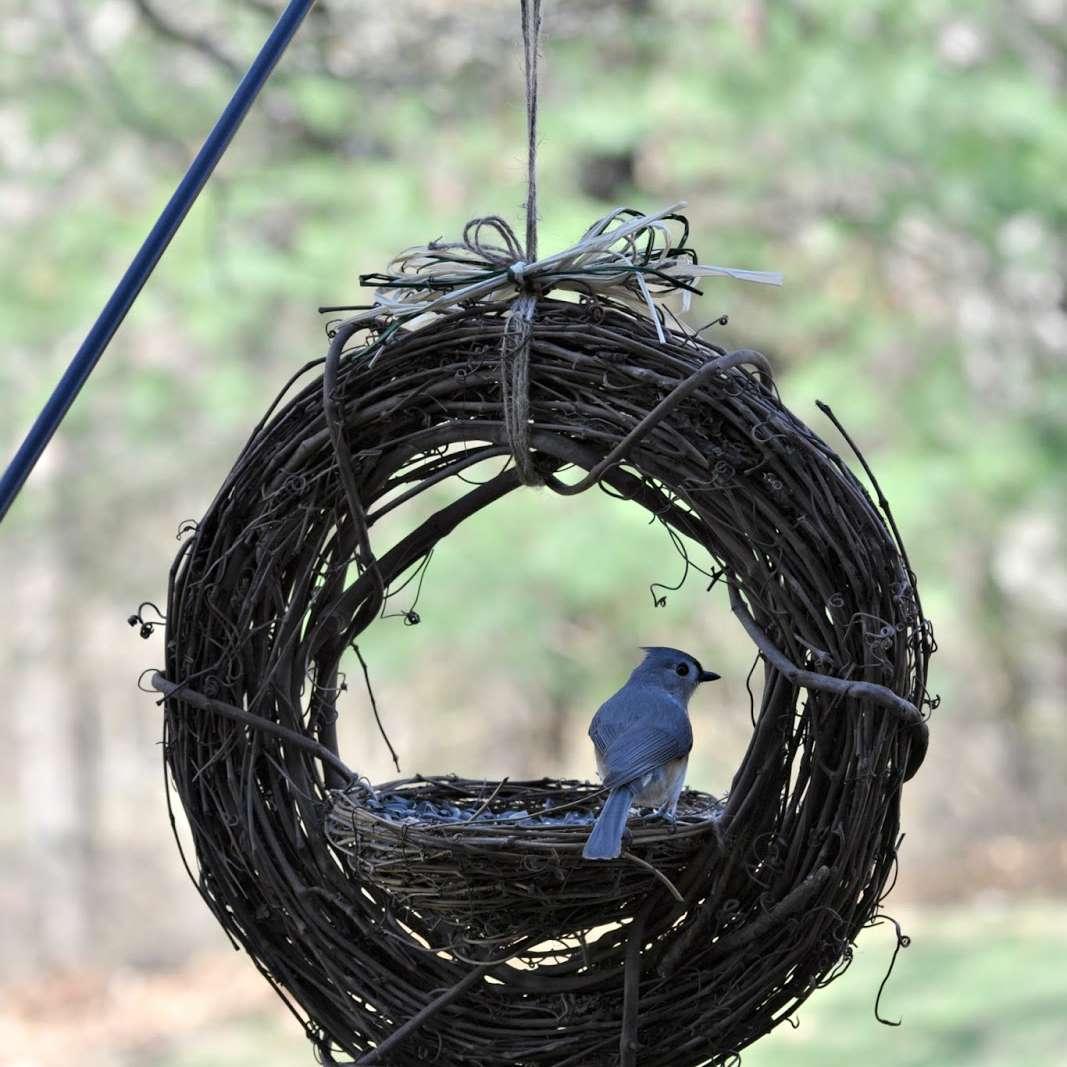 How to make a grapevine bird feeder