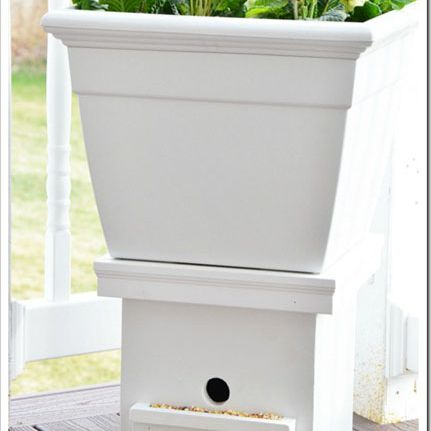 Clever birdhouse ideas you can make