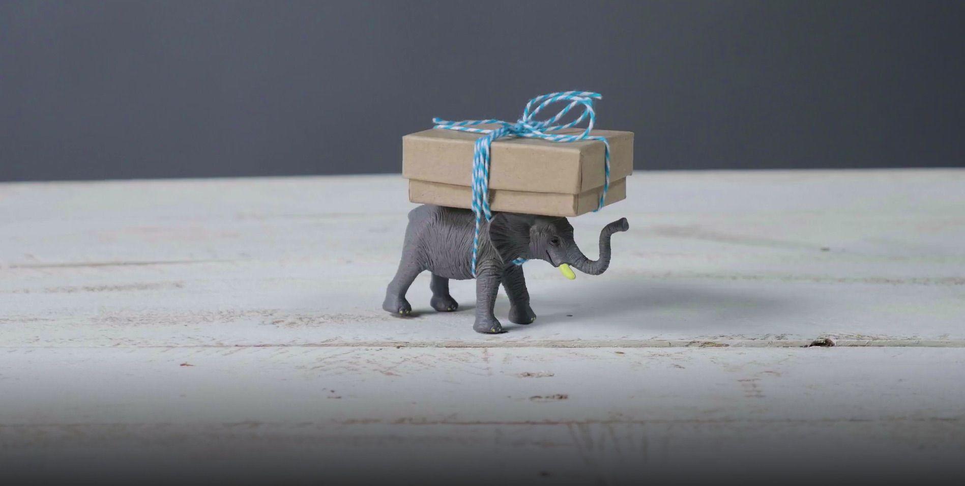 Tiny elephant carrying present.